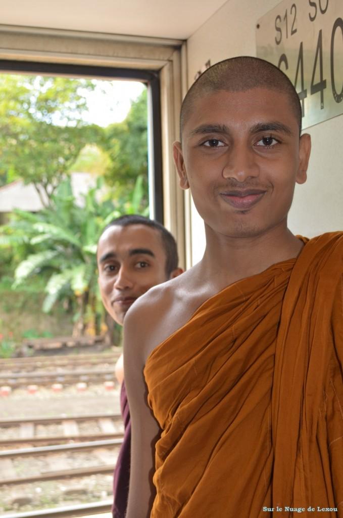 Moine Sri lanka