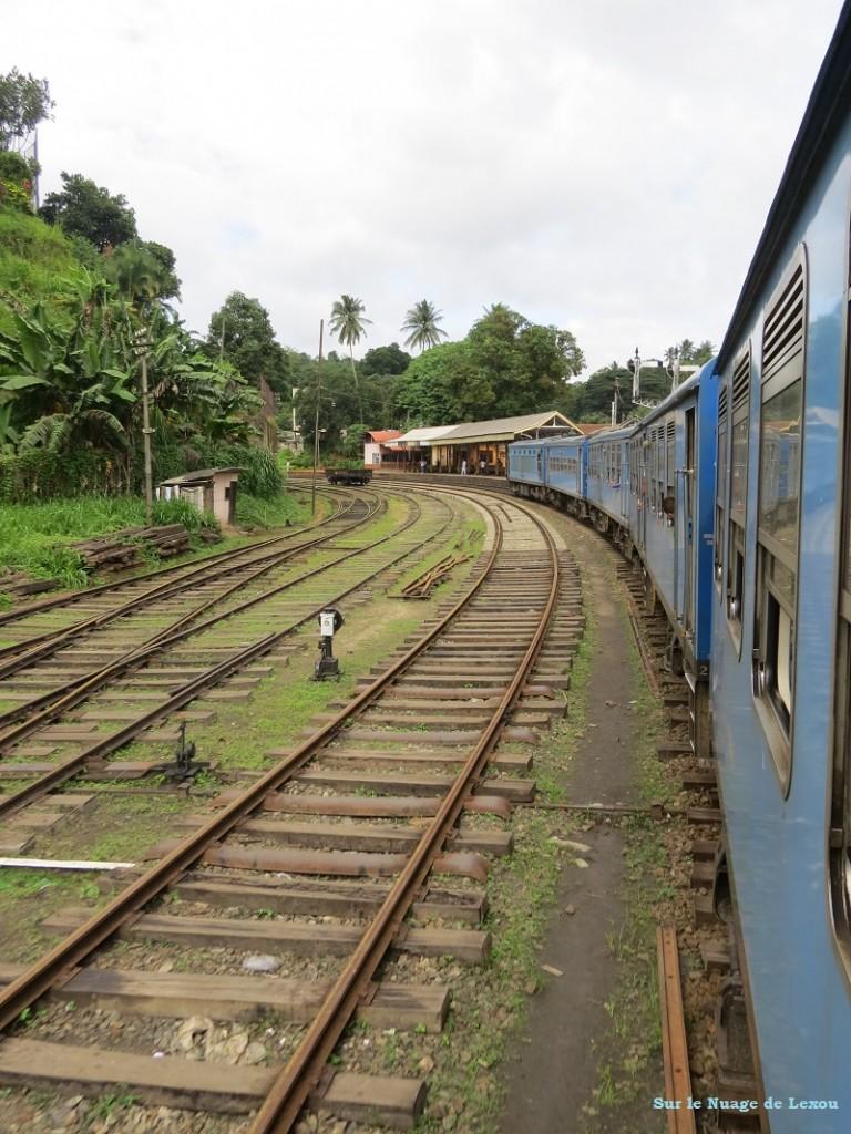 Train Kandy Gampolla