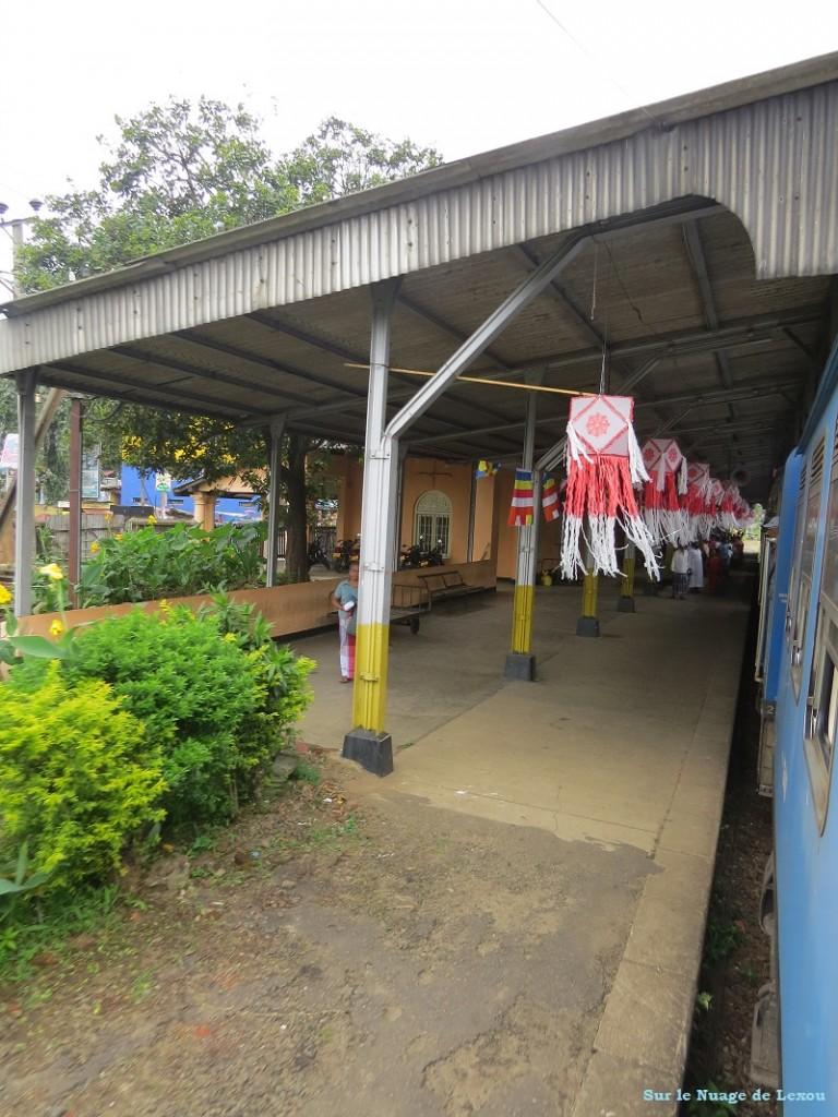 Train Kandy Nuwara Eliya