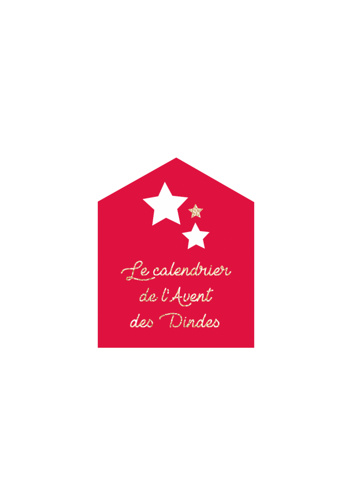 MACARON DINDES NOEL 2017