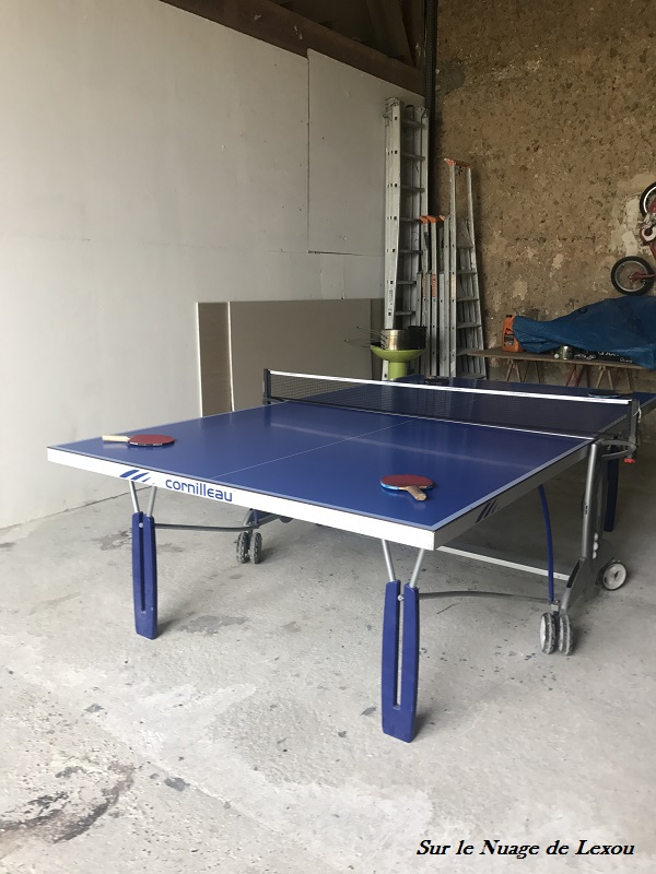 PING PONG GITE BASSE COUR