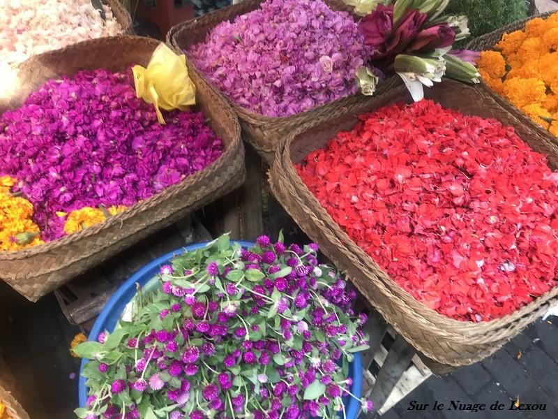 BALI FLOWERS 3