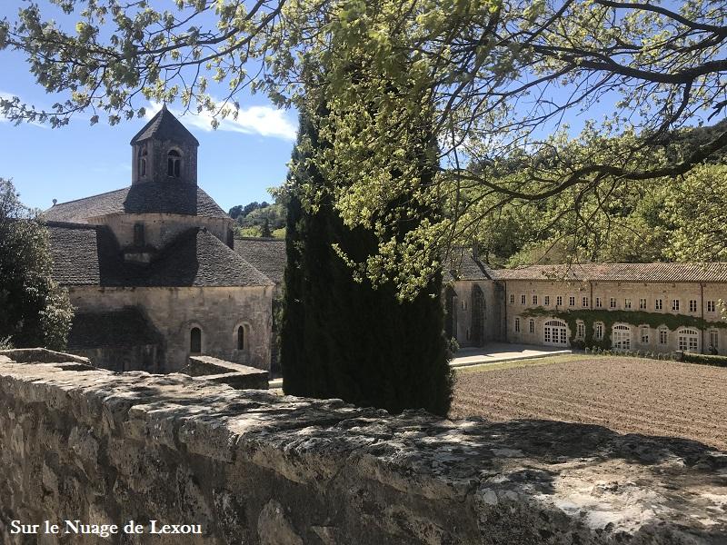 abbaye-de-senanque-gordes