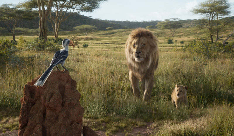 "THE LION KING - Featuring the voices of John Oliver as Zazu, James Earl Jones as Mufasa and JD McCrary as Young Simba, Disney's ""The Lion King"" is directed by Jon Favreau. In theaters July 19, 2019. © 2019 Disney Enterprises, Inc. All Rights Reserved."