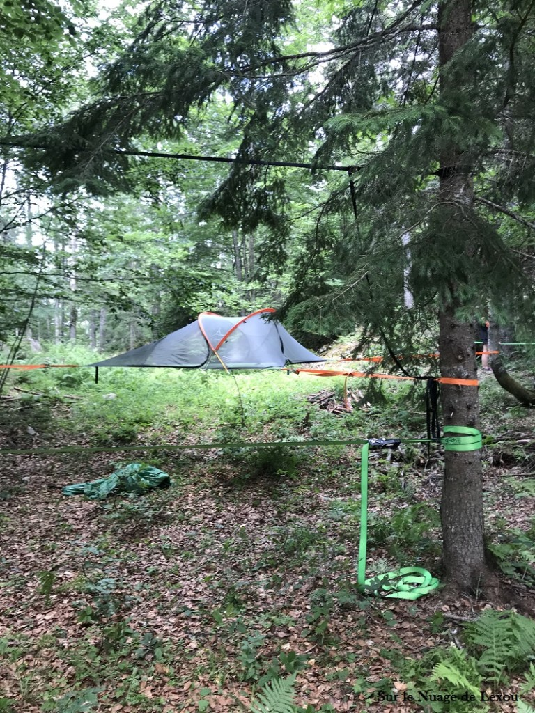 siester-dans-les-arbres